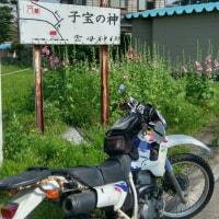 ソロ林道ツーリング
