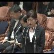 明日参議院で質問する議員と時間が解りました。