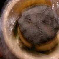 蕪の間引き菜の漬物