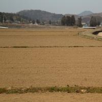 鶏足山+三座