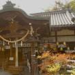 大阪 と 郡山八幡神社のお祭り