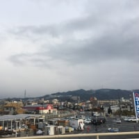 1/22 Sun 日記