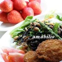 ヒレカツと野菜のセット