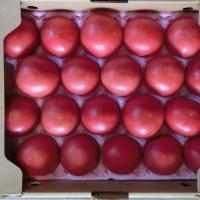 【食】日南トマト20ヶ580円
