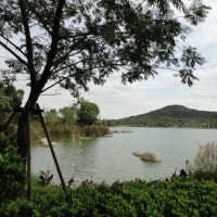張家港 鳳凰山風景区の鳳凰湖