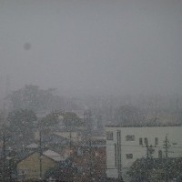 雪が・・・。
