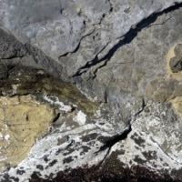 海の岩:19