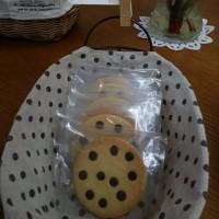 くまさんのぼうけん4/26