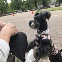 公園でブランチ散歩♪♪