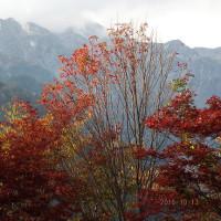 秋の撮影旅行 その1