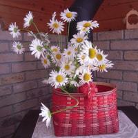 赤いかごに似合う花