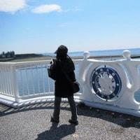 久々の『平塚漁港の食堂』