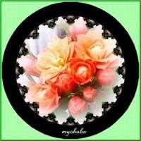 ♡…お花をどぞ…♡