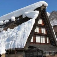 Gifu / Shirakawa-Go Trip ( 3 )