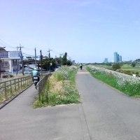 川崎市中原区・川崎市民ミュージアムに行ってきた