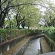 富士見町六丁目 昭和用水