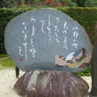 京都 紅葉狩り 2