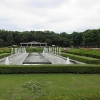 神代植物公園 May-17-2017