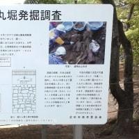群馬県・天満屋さくらんぼ園と沼田城址公園に行って来た