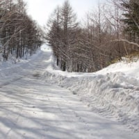 緊張感の山道