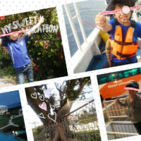 石垣島に行ってきました(写真です)