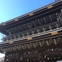ご当地みどり   東本願寺