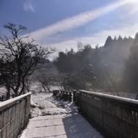 雪降りの後に~
