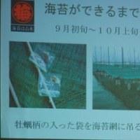 山本海苔店で海苔焼き&びん詰め体験「ガラスびん応援隊」
