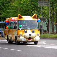 塚本幼稚園でやってることは児童虐待に等しい