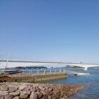 2017年2月18日 熊本旅行 二日目 その2(イルカクルージング)