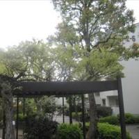 4/28 『昭和天皇実録』は昭和史の謎を解いたか(第1回)