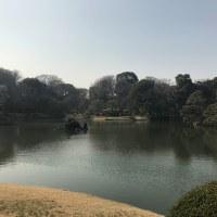 本日はしだれ桜で有名な六義園へ・・・「吉田肖像美術」