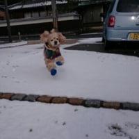 寒波到来!!