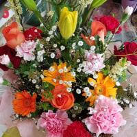 4月24日 明日の誕生花・ゆかりの花 花言葉は?(*^O^*)☆
