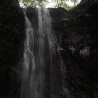 懸垂岩で基本の岩トレをしてから、新茅ノ沢を遡行。予報は雨でしたが降りませんでした