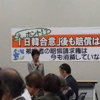 杉田水脈氏 共産党 日韓合意後も賠償は可能に潜入