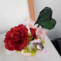 これは何のお花だと思いますか? 葉牡丹です!