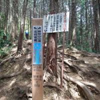日和田山~物見山
