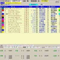 府中牝馬ステークス アイルランドトロフィー、秋華賞 レース結果と予想の検証