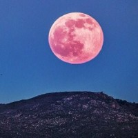満月 ストロベリームーン そして アハルテケ