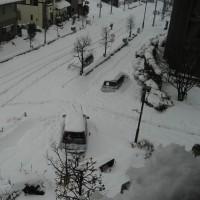 雪、2月15日