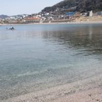 ビーチクリーン、スノーケリング、春爛漫の海