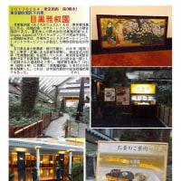 散策 「東京南西部-397」 散策 「東京南西部-396」 恵比寿駅界隈