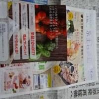 29日朝刊