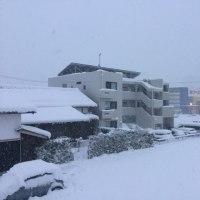 大雪警報の彦根の朝。