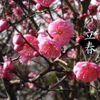 ♬〜もうすぐ春ですよ〜♬立春。