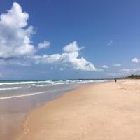 秋晴れ!→ブラジルの写真紹介