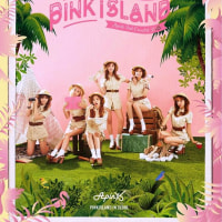 Apink 2nd Concert ��Pink Island�ס���DVD��