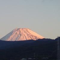 富士山には雪だ