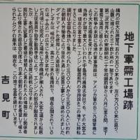 吉見② ヒカリゴケ!